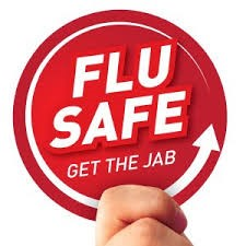 Flu Safe logo